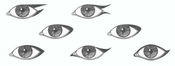 Как подводить глаза жидкой подводкой
